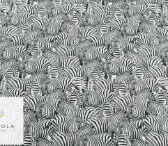 Silki zebry