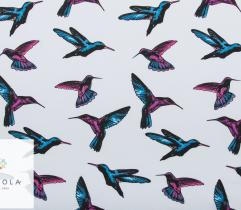 Dzianina Jersey single - kolibry