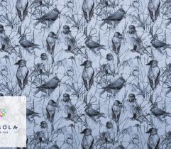 Tkanina Silki - Szkicowane Ptaki