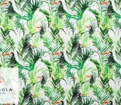 Tkanina Silki - Tukany w tropikach
